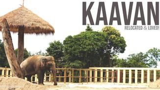 KAAVAN'S EPIC JOURNEY