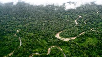 AMAZON: Wait No More