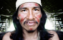 ECUADOR-AMAZON RAINFOREST