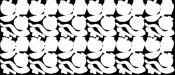 HHD_pattern_white_horiz.png