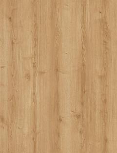 RB 2101_Gante Oak_Layout.jpg