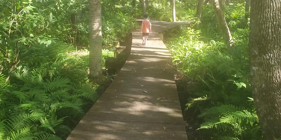 Nature School- Boca Ciega Millennium Park