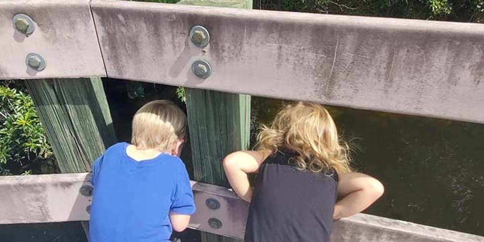 Nature School- Sawgrass Lake Park