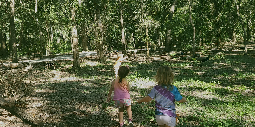 Forest School- Moccasin Lake Park