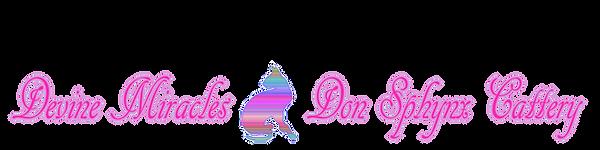 logo&&&.png