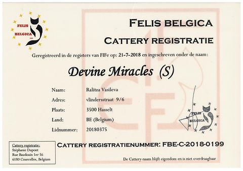 cattery felis belgiga FIFE