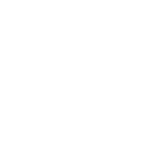 heel pad icon.png