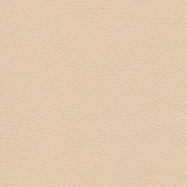 03_sontex_beige.png