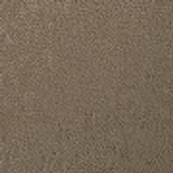 GLAMOUR ELEPHANT col 23(7323)