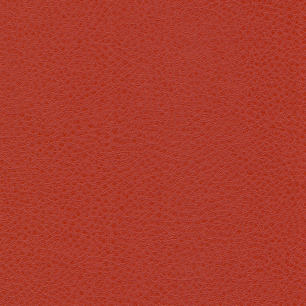 05_sontex_red.png