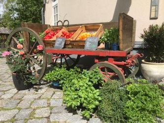 Hofladen_Gemüse.jpg
