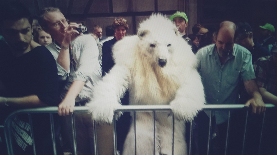 A person in a polar bear suit leans on a railing