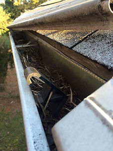 Expensive gutter protection