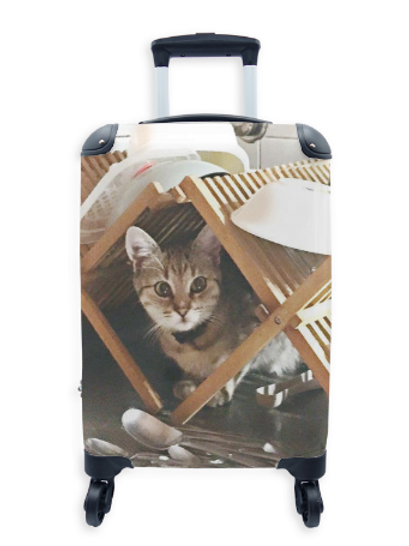 Street Art Suitcase Cat & Dishes 015