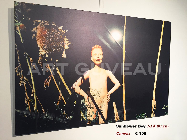 Sunflower Boy Framed
