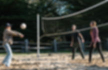 Volley%20Ball%203_edited.jpg