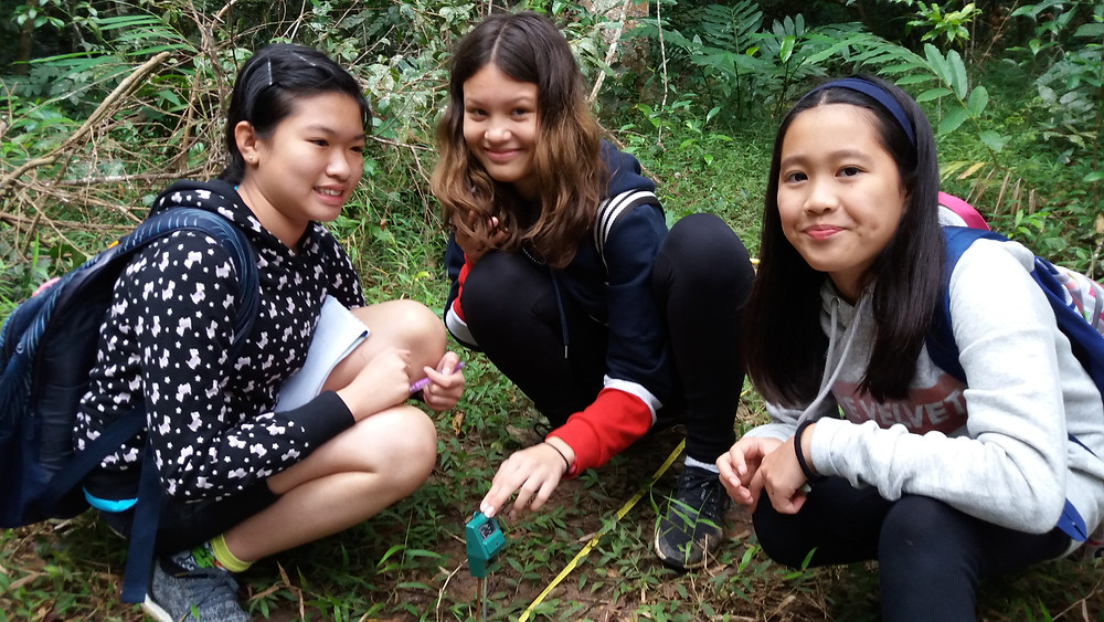 Geography field studies in Khao Yai National Park