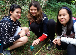St. Stephen's Bangkok, Year 8 - Ecotourism, Trekking and English Teaching!