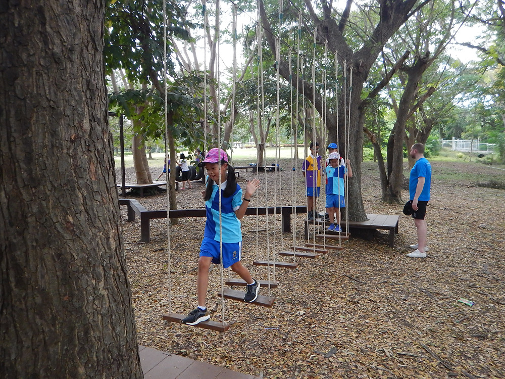 Jungle Gym Low Ropes Course - #4 Plank Ladder