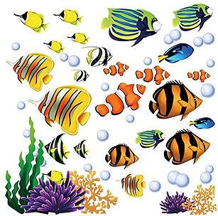 fish_orig.jpg