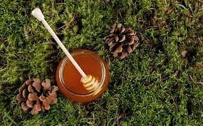 Oak forest honey 50mg