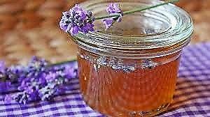 Lavender Honey 50mg