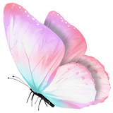 Sarah_Peis_Butterfly_High_Res.png