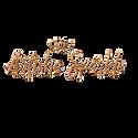 AxSLogo2020 gold glitter.png