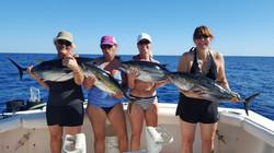 Sportfishing in Los Barriles