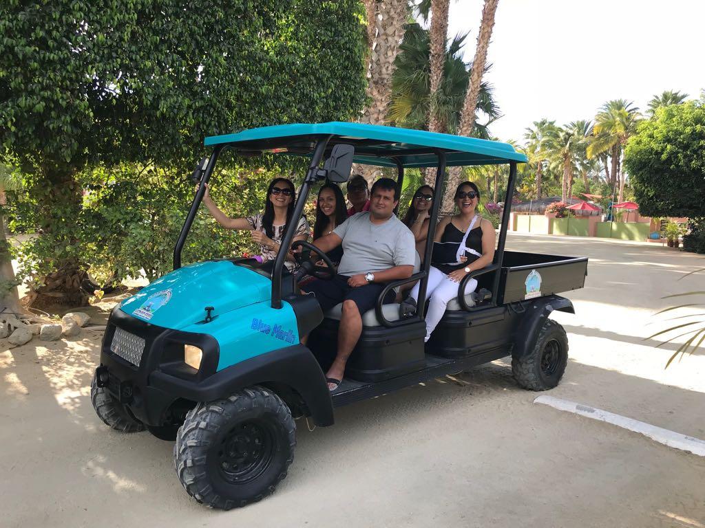 Affordable cart rental