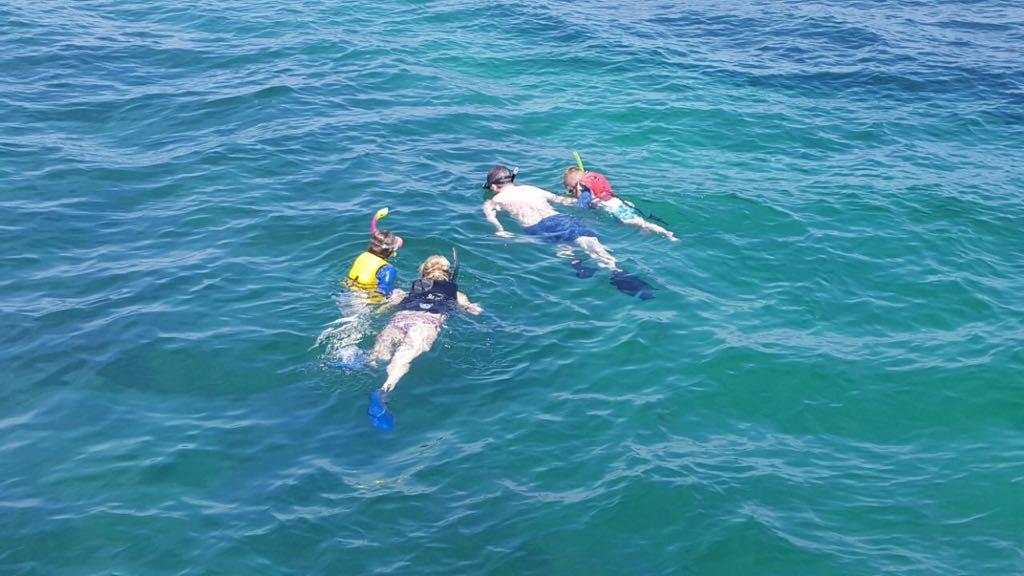 Snorkel the sea of Cortez
