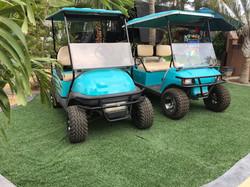 Alternative to ATV rental