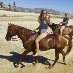 Sea of Cortez Horseback Riding