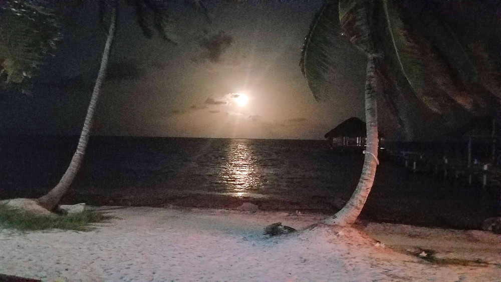 Full moon off Ambergris Caye, Belize (credit Gist Say'n)