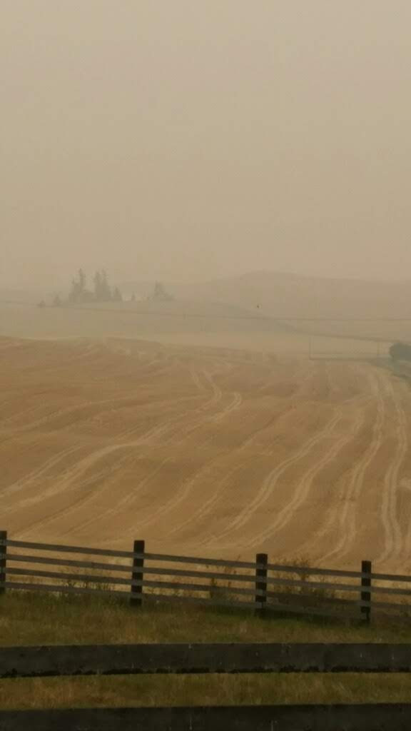 Smoke from forest fires some 100 miles away choke the Palouse (credit, GistSayn.com)