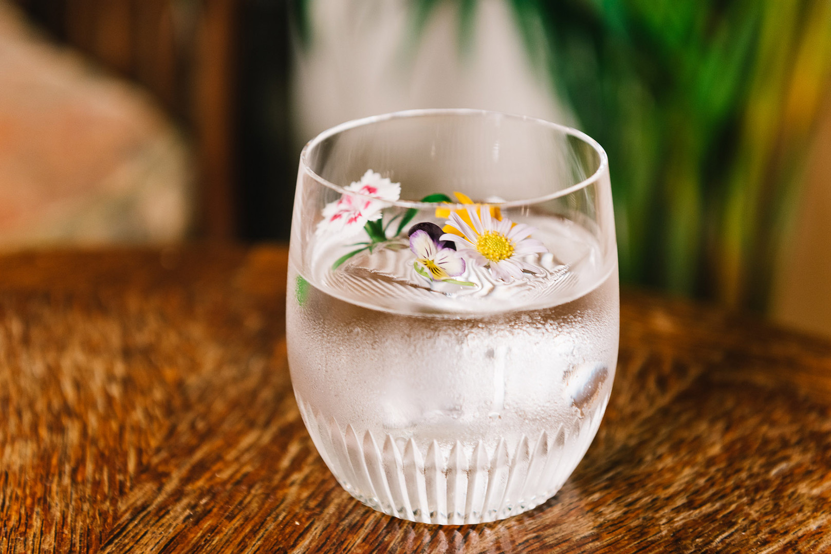 Cocktail - Tropicopop