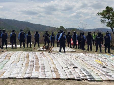 Incineradas 2.3 toneladas de droga decomisada por la DNPA
