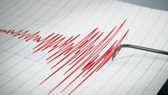 Un sismo de 4.0 en sacudió a Los Ángeles sin registrar daños