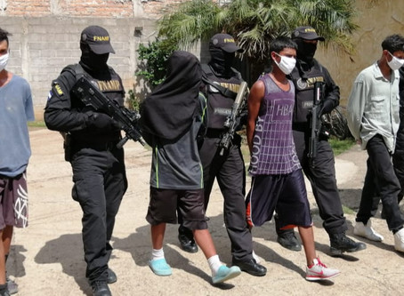 La FNAMP detiene a 4 miembros de la Mara Salvatrucha dedicados al microtrafico de drogas