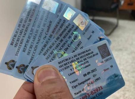 Más de 46 mil licencias de conducir han sido decomisadas por diferentes faltas a nivel nacional