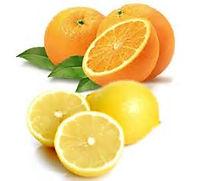 Oranges Lemons.jpg