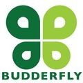 The Budderfly Effect