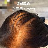 二回染め(①ヘナ).jpg