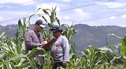 Diego Serna, agropecuario, ingeniero agropecuario, asesor
