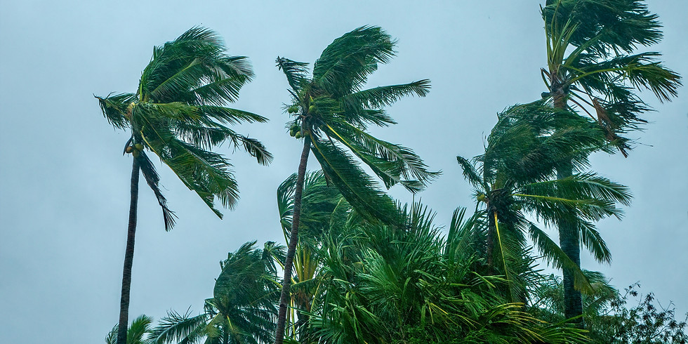 E-Launch of Queensland Neighbourhood Centres Strategy for Monsoon Resilience