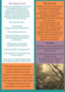 CD Webinar Series Flyer p2.jpg