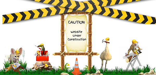 CWebsite Under Construction.png