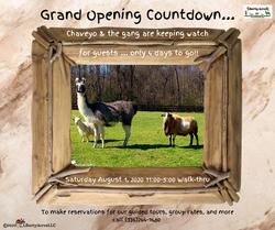 Grand Opening(6)