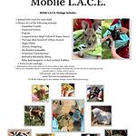 Mobile L.A.C.E.(2).png