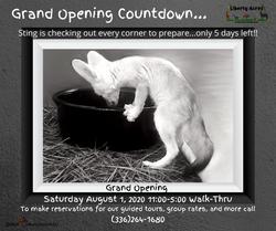 Grand Opening(5)